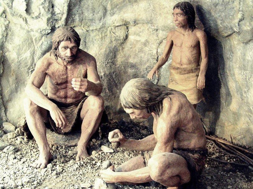 человек картинки неандерталец и кроманьонец обои подойдут