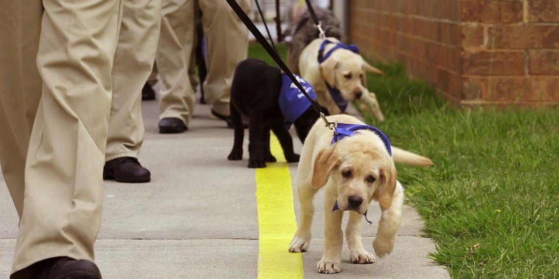 Фото: emaze.com